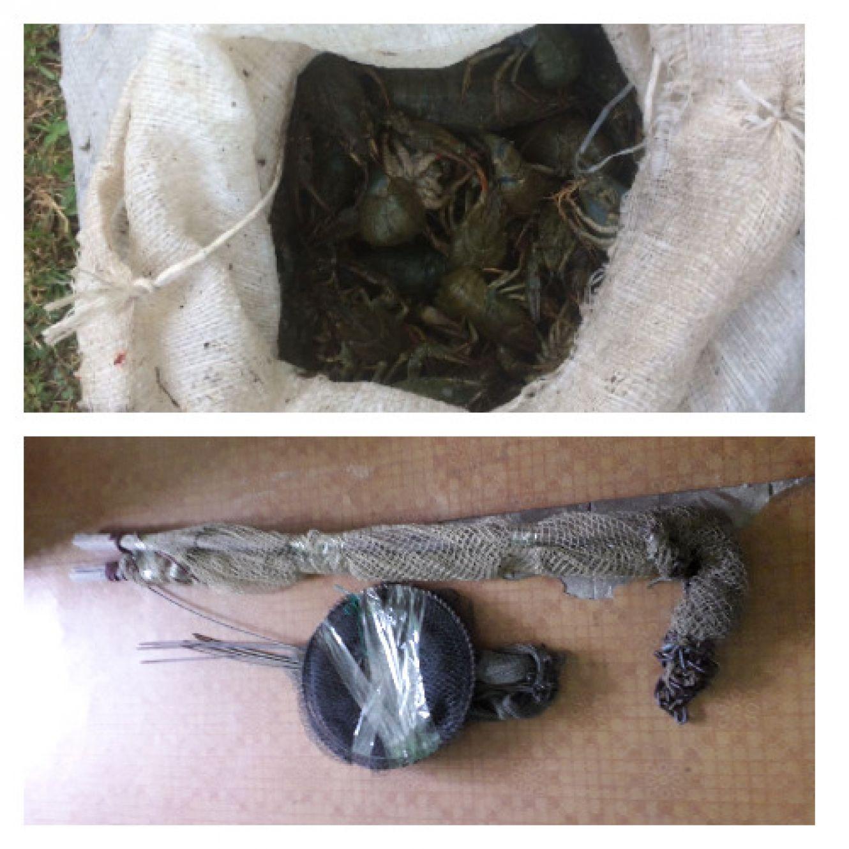 За 7 днів Сумський рибоохоронний патруль викрив 10 порушень природоохоронного законодавства