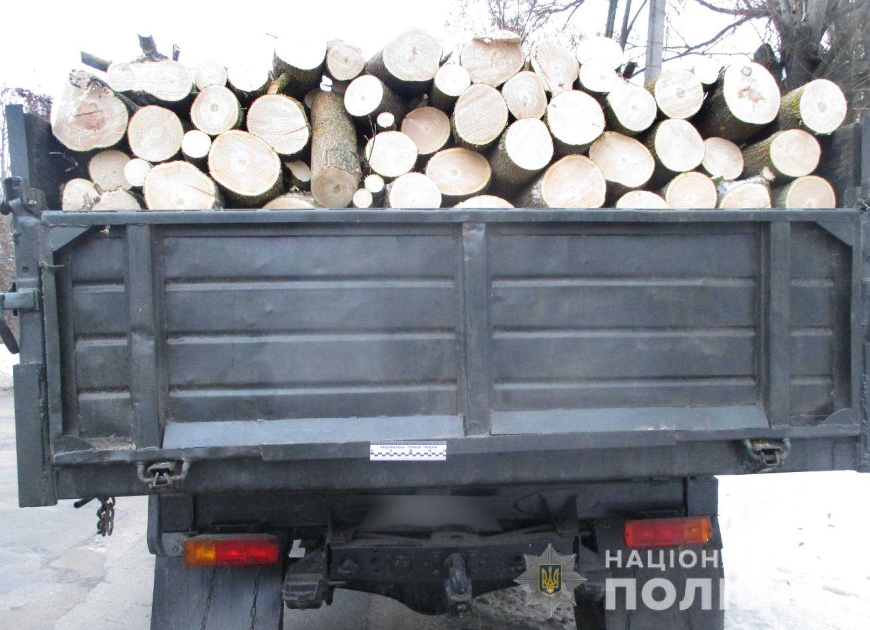 Поліція викрила жителя Сумщини у незаконній вирубці та перевезенні деревини