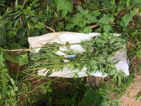 Поліцейські вилучили наркотичні засоби у жителів Сумщини